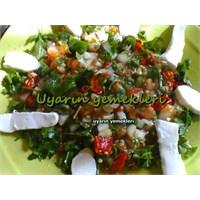 Urfa Usulu Paşa Salatası
