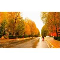Beylikdüzü'nde Sonbahar Daha Güzel