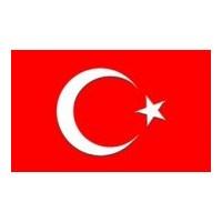 Türk Vatandaşlığına Nasıl Geçilir ?
