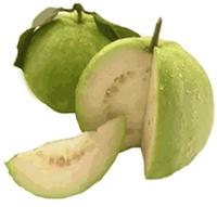 Mucize Bir Meyve Guava