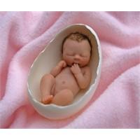 Erken Doğum Tehlikesi
