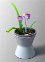 Pratik Faydalı Çiçek