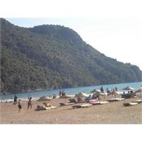 Dalyan,köyceğiz Gölü,çamur Banyosu,kaunos,iztuzu