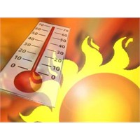Sıcak Havalarda Basura Dikkat!