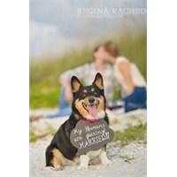 Değişik Düğün Fotoğrafları!