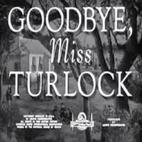 Hoşça Kal Bayan Turlock