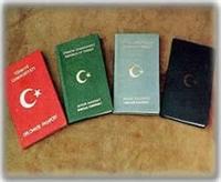 Türkler Vize Almadan 58 Yere Gidebilecek