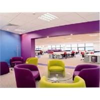 Ofis Dizaynı Ve Renk Seçimi