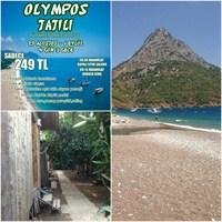 Olimpos Tatili