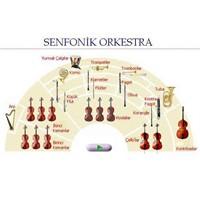 Senfoni Orkestralarinda Müzik Aletlerinin Yerleşim