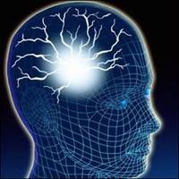 Zinde Bir Beyin İçin
