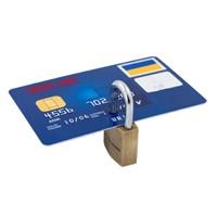 Bddk Başkanı: Bankaların Aldığı Kredi Kartı Faizi