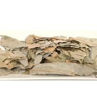 Avokado Yaprağı Çayı Tarifi Ve Faydaları