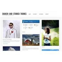 Wordpress İçin Bedava Galeri Ve Portfolio Temaları
