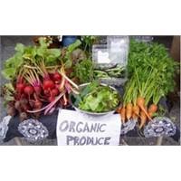 Organik Besinlerle İlgili Bilmeniz Gerekenler