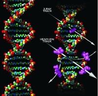 Genetik Nedir?
