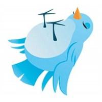Twitter'dan İlk Sansür