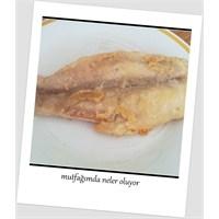 Fileto Balık Marine Ederken....