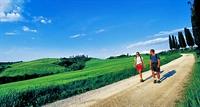 Yürüyüş Kalp Damar Hastalığına İyi Geliyor