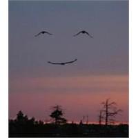 Sobe : Ben Mutluluk