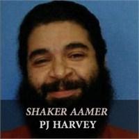 """Yeni Şarkı: P.J. Harvey """"Shaker Aamer"""""""