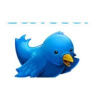 Blog Yazılarınızı Otomatik Olarak Twitter'a Gönder