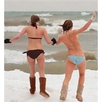 Etkinlik: Kutup Ayısı Yüzüşü -polar Bear Swim 2013