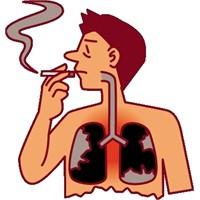 Sigarayı Bıraktıktan Sonra Vücutta Neler Yaşanır?