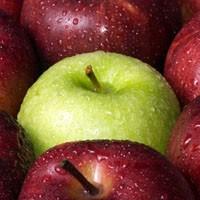 Elma Yemek Zayıflatır Mı