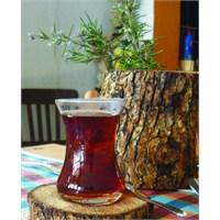 Yağlı Cilde Çay