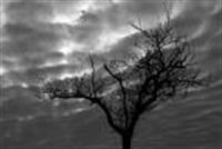 Mevsimsel Depresyon Ve Depresyon Belirtileri