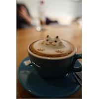 Espresso Kahve Nedir? Bilen Var Mı?