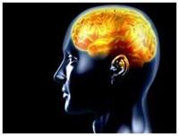 Beyin Nasıl Beslenir?
