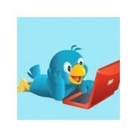 Twitter'dan Reklam Atağı!