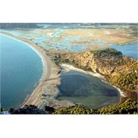 Tatil Önerisi İztuzu Plajı – Dalyan – Muğla