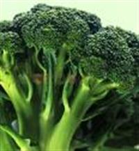 Brokoli Yiyin,göğüs Kanserini Önleyin