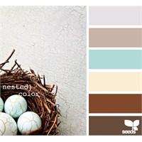 Dekorasyonda Renk Önerileri (Color Palette)