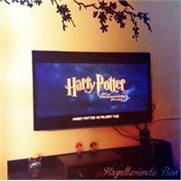 Harry Potter Film Maratonu
