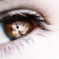 Gözler Neden Yalan Söylemez?