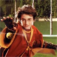 Harry Potter Bitti. Peki Sonra Onlara Ne Oldu?