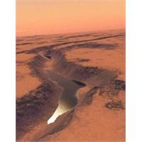 Merak Mars'taki Gölde Hayat Olduğunu Destekliyor