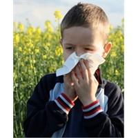 Bahar Alerjilerine Karşı Pratik Öneriler