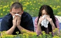 Alerjiye Karşı Bitkisel Öneriler