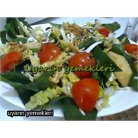 Elmalı Salata