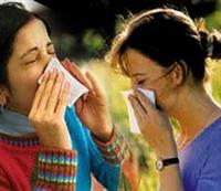 Alerjik Grip Ve Saman Nezlesi İçin