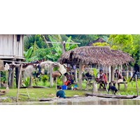 Kabileleriyle Papua Yeni Gine