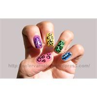 Leopard Print Nail Art 5 Renk