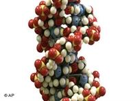 Genetik Yapıya Göre Diyet