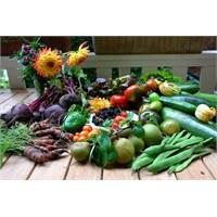 Doğal Sebzeleri Kendi Evinde Yetiştir!
