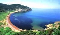 Tatil Cenneti : Erdek